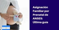 asignacion prenatal de anses